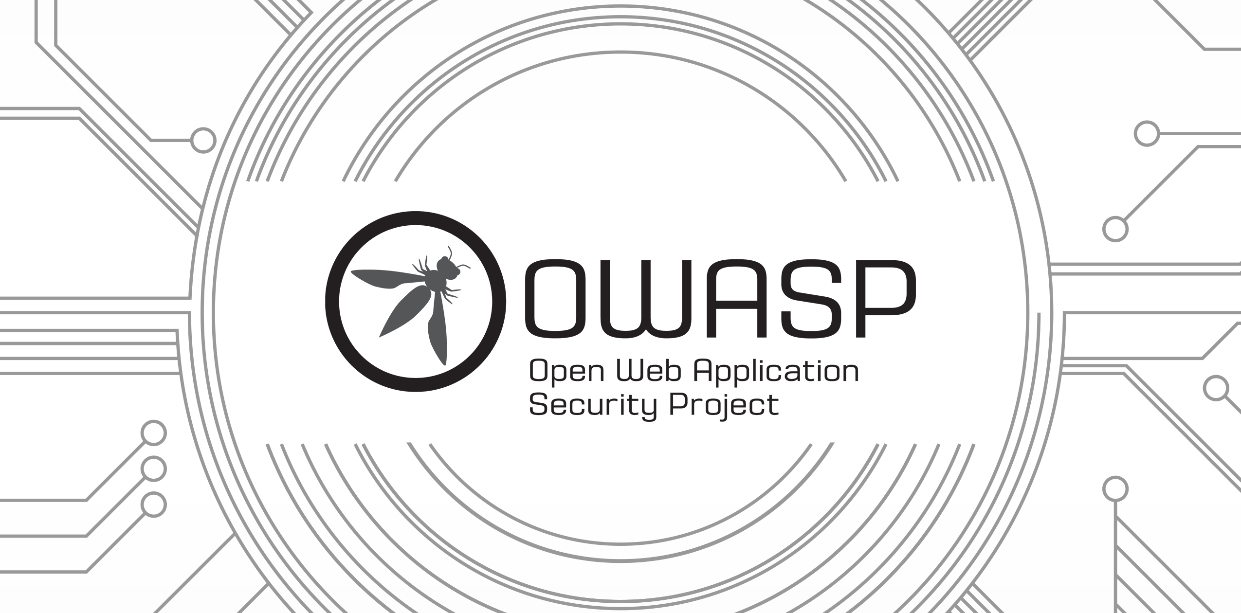 ultimate-guide-to-owasp-security-checks