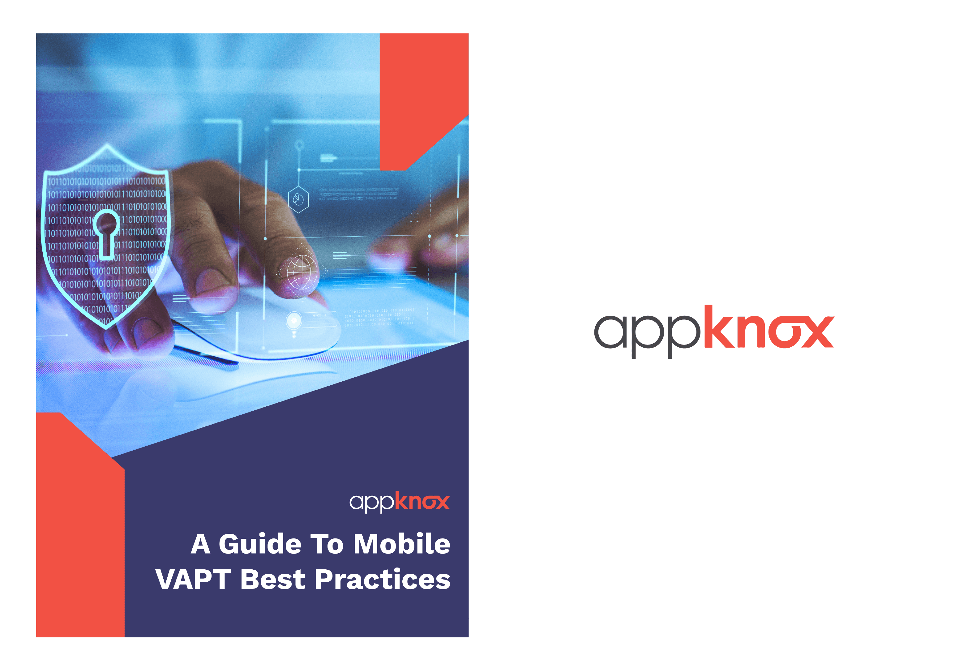 WHITE PAPER - VAPT Best Practices