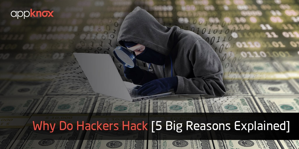 Why Do Hackers Hack [5 Big Reasons Explained]